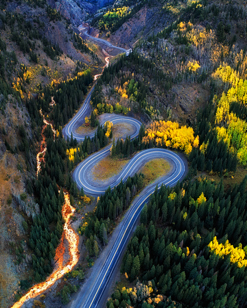 Autumn Curves
